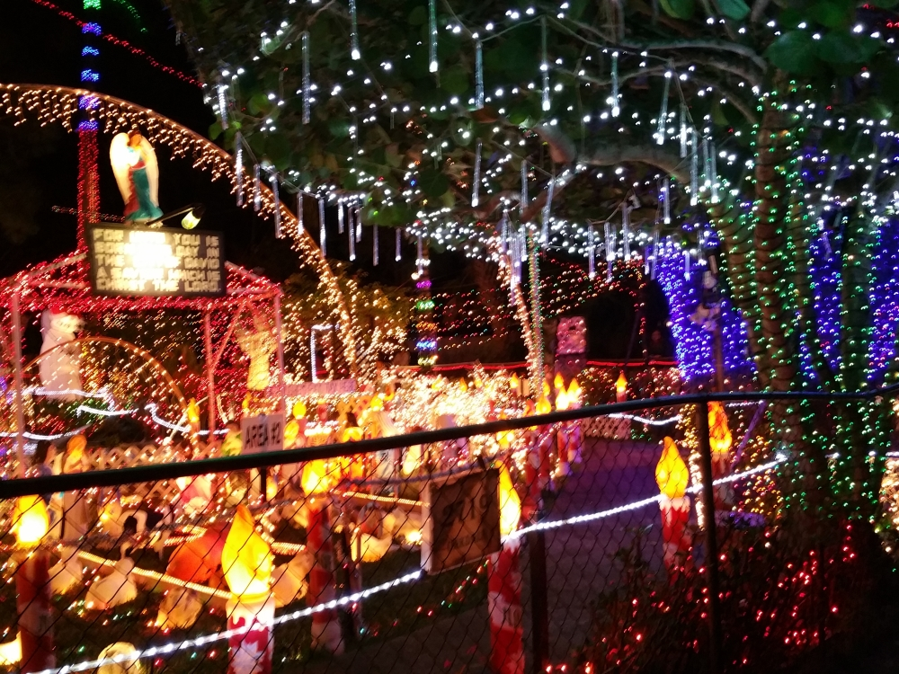 Visited 1 of the Top 3 Christmas Houses in the USA